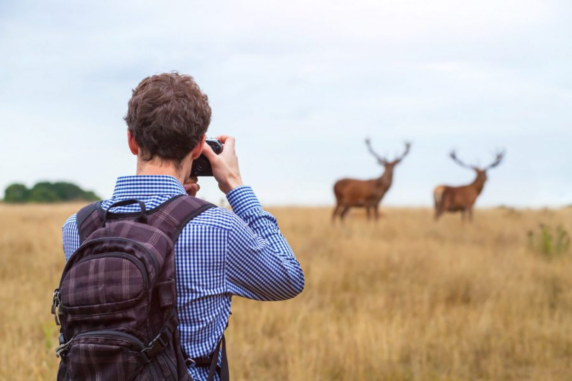 Things you need to do to become the best nature photographer!